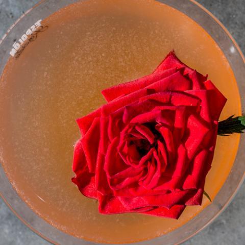 Rosarita la Calda Emilio Cafe Vetrinando Arezzo