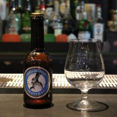 Birra Listra Birrificio 26 Nero Quokka Cafè Arezzo