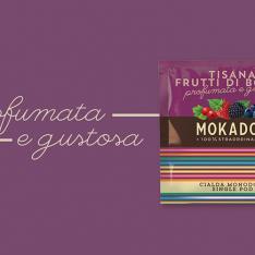 Tisana Frutti Di Bosco Mokador Dagila Vending Arezzo